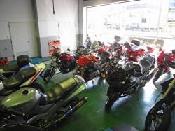さまざまなバイクたち。みんなきれいで使い込まれています。